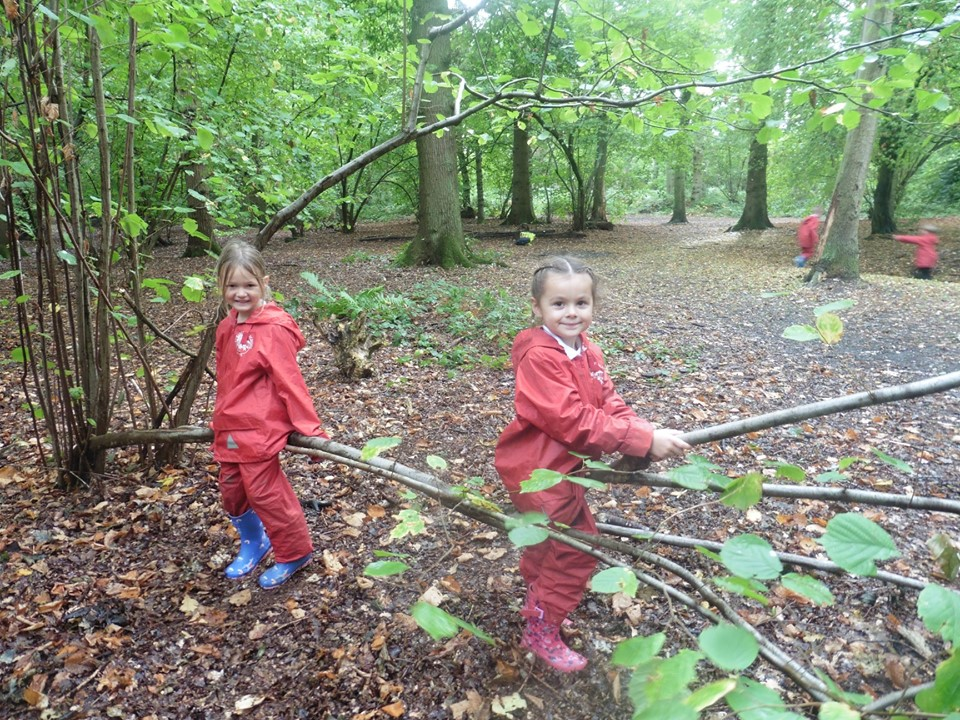 Forest School Curriculum